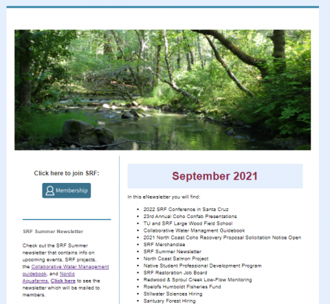 An image of the eNewsletter like it would appear in your email which includes a picture of a stream