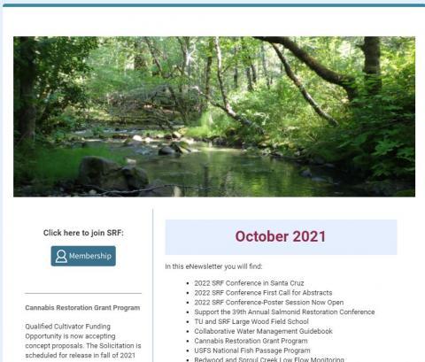 An image of the SRF October eNewsletter