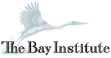 Bay Institute logo and link