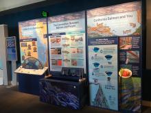 NOAA's Monterey Bay National Marine Sanctuary Salmonscape Exhibit