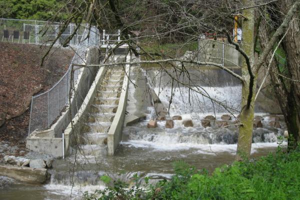 City of Watsonville Fish Ladder
